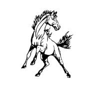 Cairo-Durham logo