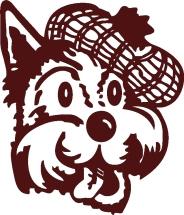New Scottie Dog Pictures